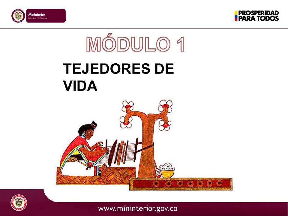 TEJEDORES DE VIDA