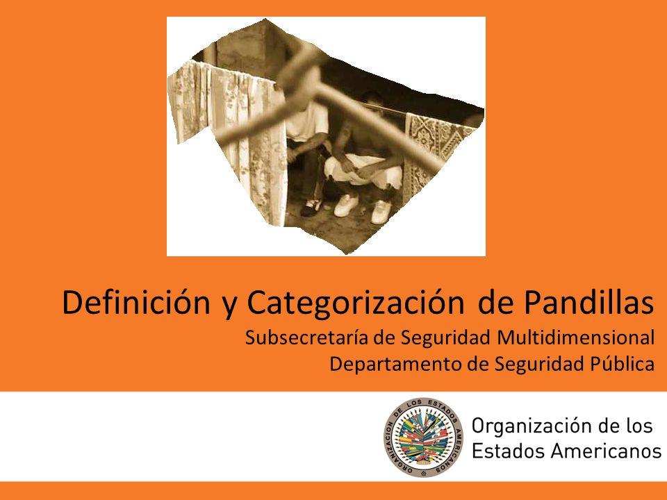 1 Definición y Categorización de Pandillas Subsecretaría de Seguridad Multidimensional Departamento de Seguridad Pública