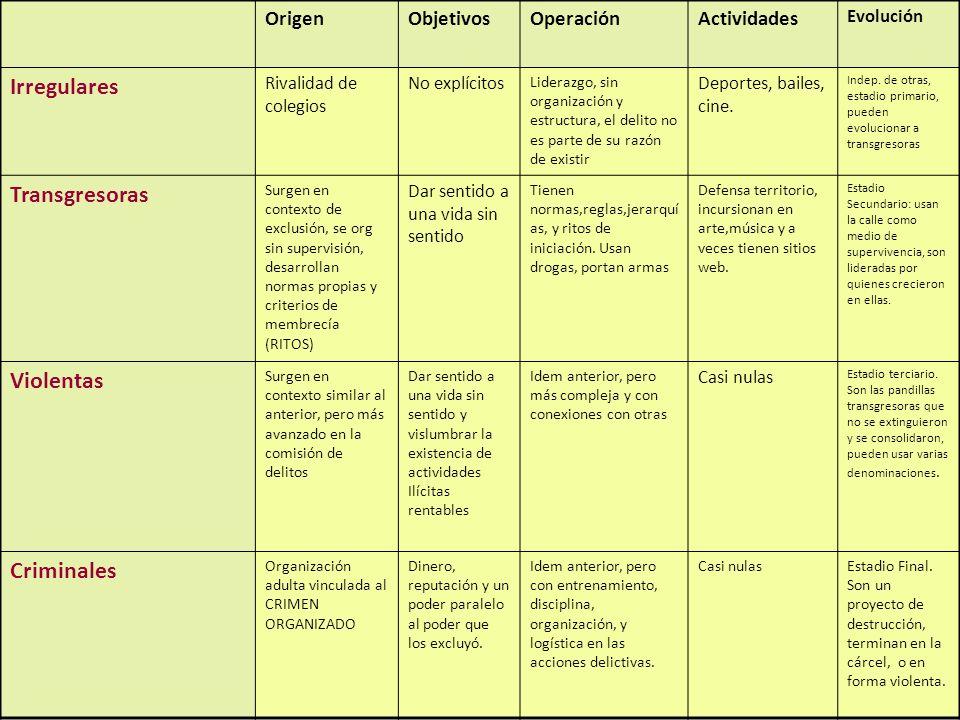 18 OrigenObjetivosOperaciónActividades Evolución Irregulares Rivalidad de colegios No explícitos Liderazgo, sin organización y estructura, el delito n