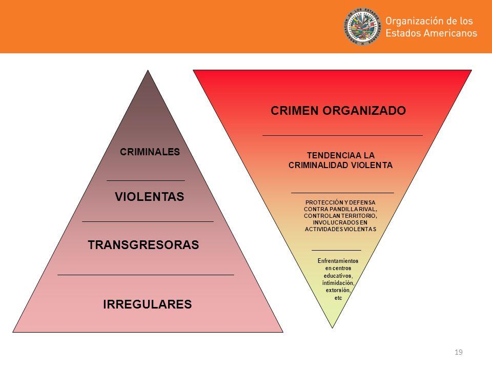 19 IRREGULARES TRANSGRESORAS VIOLENTAS CRIMINALES Enfrentamientos en centros educativos, intimidación, extorsión, etc PROTECCIÓN Y DEFENSA CONTRA PAND