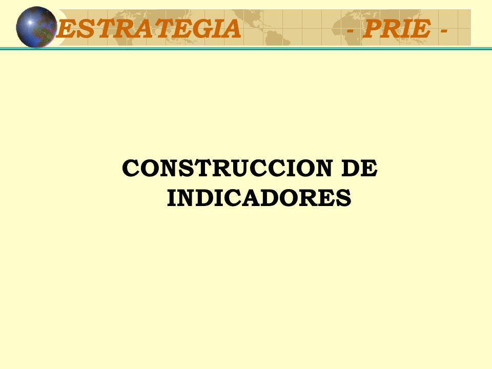 PROPUESTA 2003-2005 Construcción de Indicadores: Sistemas nacionales de estadísticas Fuentes de información Continuar desarrollando el conjunto actual de indicadores Nuevos indicadores