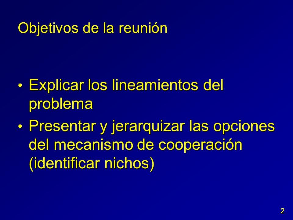 Objetivos de la reunión Explicar los lineamientos del problema Explicar los lineamientos del problema Presentar y jerarquizar las opciones del mecanis