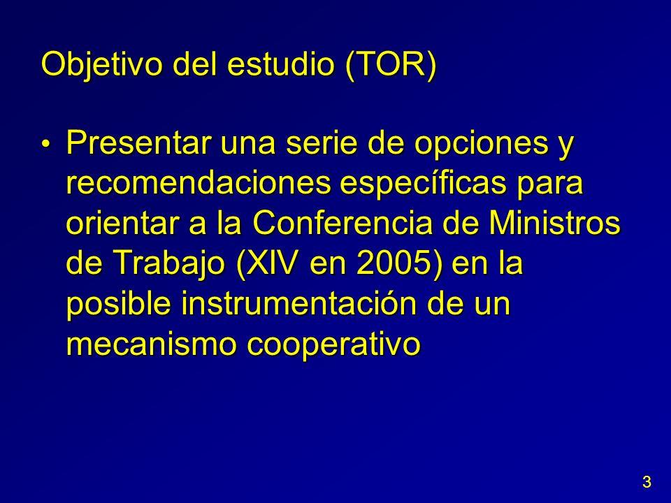 Objetivo del estudio (TOR) Presentar una serie de opciones y recomendaciones específicas para orientar a la Conferencia de Ministros de Trabajo (XIV e