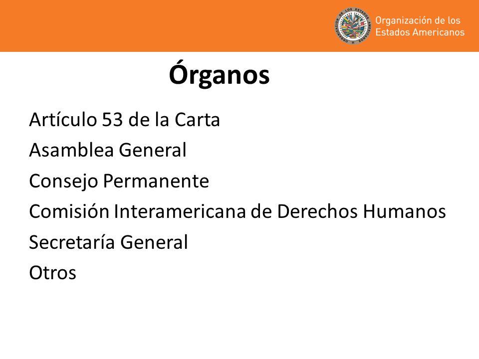 Asamblea General Órgano supremo de la Organización: decide la acción y la política generales de la OEA Reunión de Ministros de Relaciones Exteriores Se reúne una vez por año Decisiones: declaraciones y resoluciones (tratados, legislación modelo, programas, planes de acción, otros) Cada Estado tiene derecho a un voto Regla del consenso