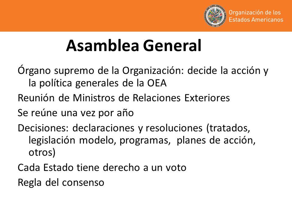 Asamblea General Órgano supremo de la Organización: decide la acción y la política generales de la OEA Reunión de Ministros de Relaciones Exteriores S