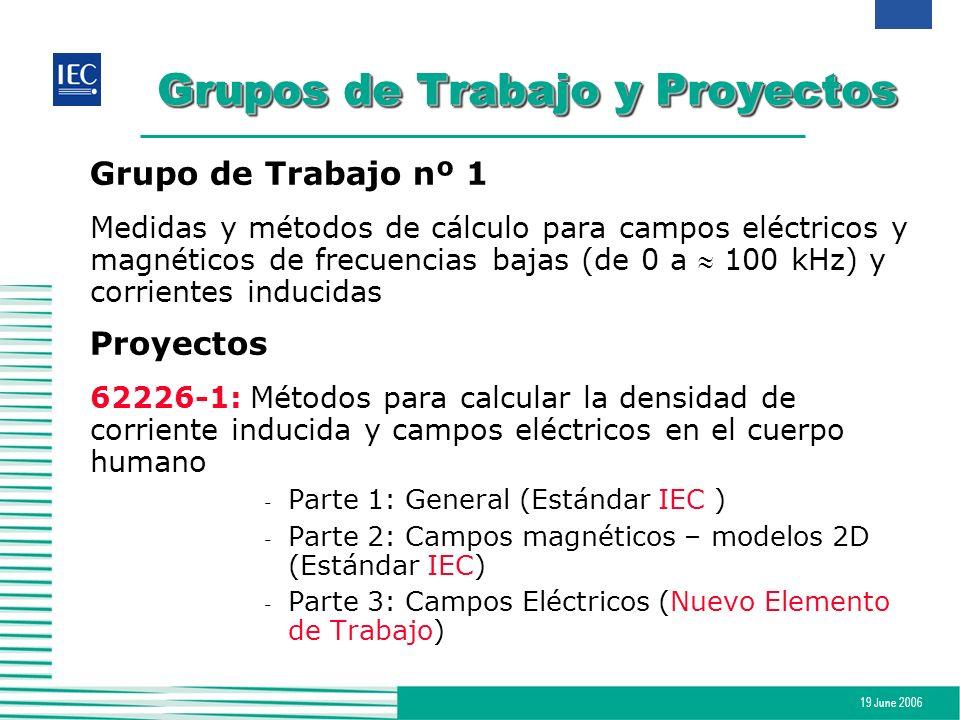 19 June 2006 Grupos de Trabajo y Proyectos Grupo de Trabajo nº 1 Medidas y métodos de cálculo para campos eléctricos y magnéticos de frecuencias bajas