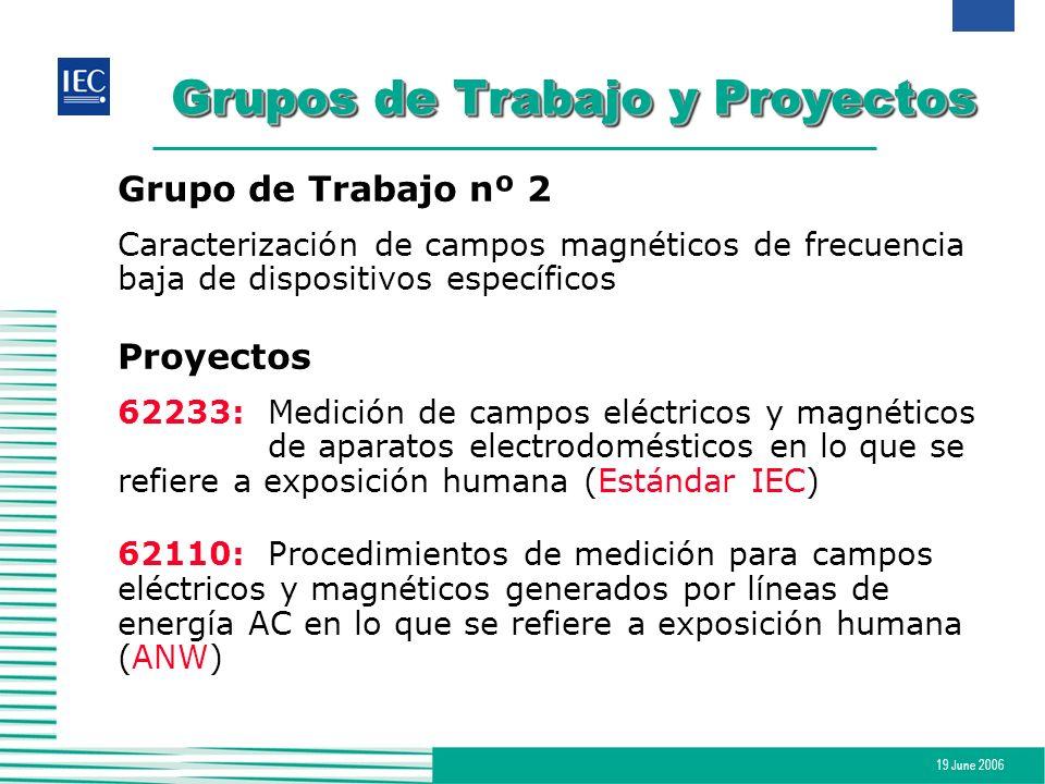 19 June 2006 Grupos de Trabajo y Proyectos Grupo de Trabajo nº 2 Caracterización de campos magnéticos de frecuencia baja de dispositivos específicos P