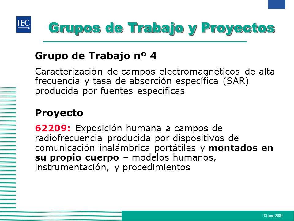 19 June 2006 Grupos de Trabajo y Proyectos Grupo de Trabajo nº 4 Caracterización de campos electromagnéticos de alta frecuencia y tasa de absorción es