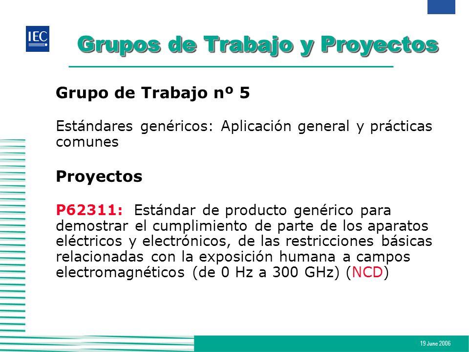 19 June 2006 Grupos de Trabajo y Proyectos Grupo de Trabajo nº 5 Estándares genéricos: Aplicación general y prácticas comunes Proyectos P62311:Estánda