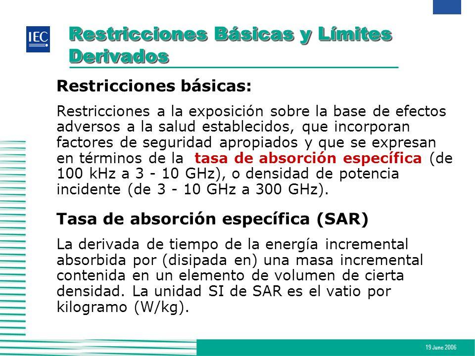 19 June 2006 Restricciones Básicas y Límites Derivados Restricciones básicas: Restricciones a la exposición sobre la base de efectos adversos a la sal