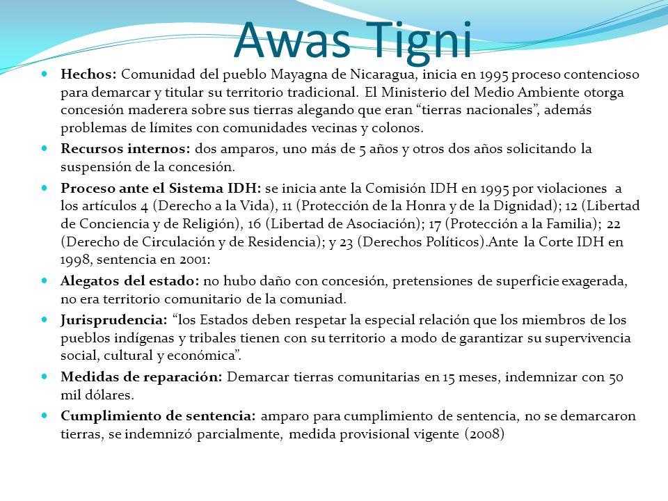Awas Tigni Hechos: Comunidad del pueblo Mayagna de Nicaragua, inicia en 1995 proceso contencioso para demarcar y titular su territorio tradicional. El