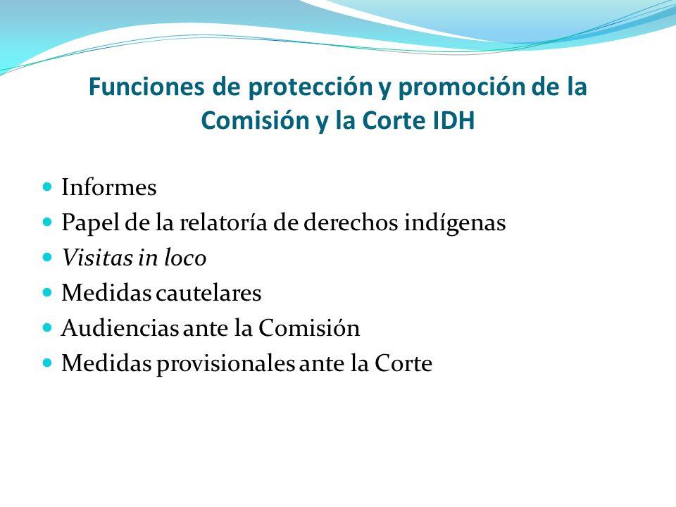Funciones de protección y promoción de la Comisión y la Corte IDH Informes Papel de la relatoría de derechos indígenas Visitas in loco Medidas cautela