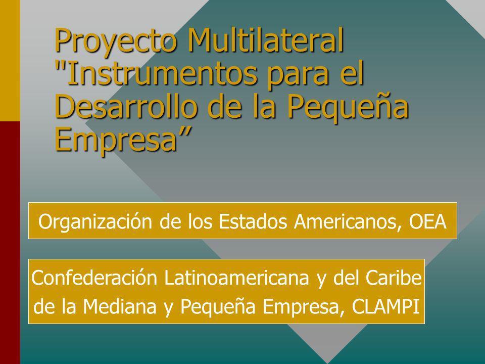 Proyecto Multilateral Instrumentos para el Desarrollo de la Pequeña Empresa Organización de los Estados Americanos, OEA Confederación Latinoamericana y del Caribe de la Mediana y Pequeña Empresa, CLAMPI