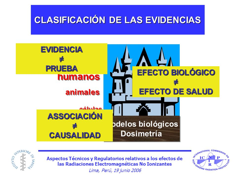 Aspectos Técnicos y Regulatorios relativos a los efectos de las Radiaciones Electromagnéticas No Ionizantes Lima, Perú, 19 junio 2006 Modelos biológic