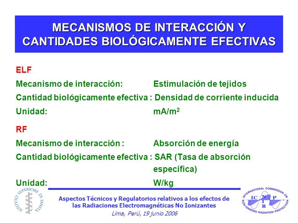 Aspectos Técnicos y Regulatorios relativos a los efectos de las Radiaciones Electromagnéticas No Ionizantes Lima, Perú, 19 junio 2006 MECANISMOS DE IN