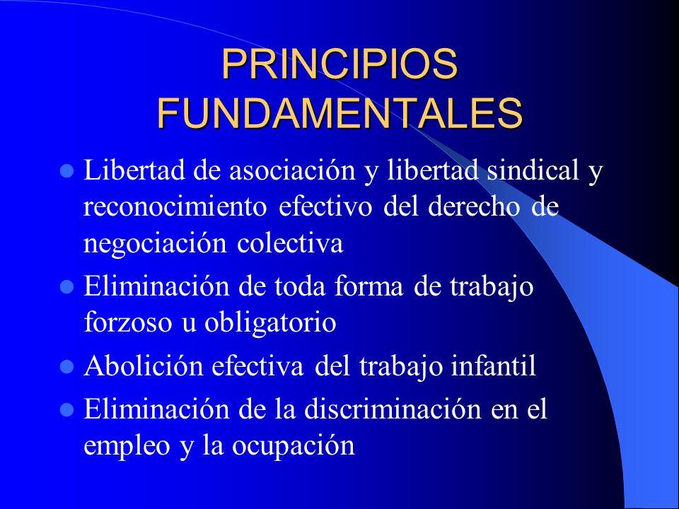 PRINCIPIOS FUNDAMENTALES Libertad de asociación y libertad sindical y reconocimiento efectivo del derecho de negociación colectiva Eliminación de toda