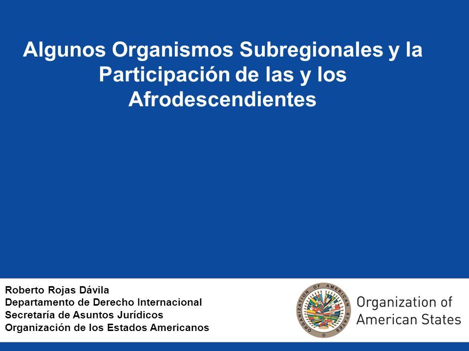 Algunos Organismos Subregionales y la Participación de las y los Afrodescendientes Roberto Rojas Dávila Departamento de Derecho Internacional Secretaría de Asuntos Jurídicos Organización de los Estados Americanos