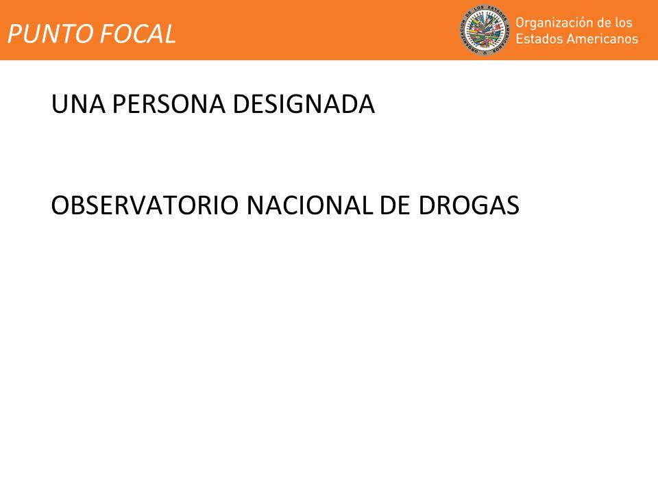 PUNTO FOCAL UNA PERSONA DESIGNADA OBSERVATORIO NACIONAL DE DROGAS
