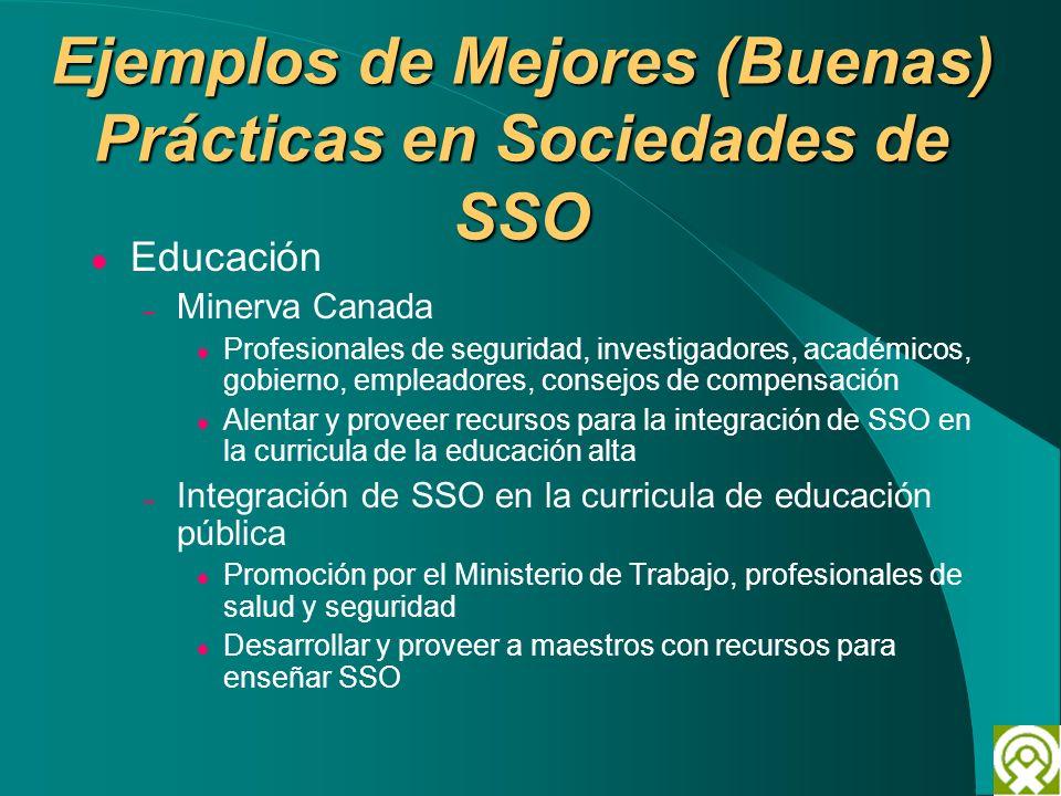 Ejemplos de Mejores (Buenas) Prácticas en Sociedades de SSO Educación – Minerva Canada Profesionales de seguridad, investigadores, académicos, gobiern