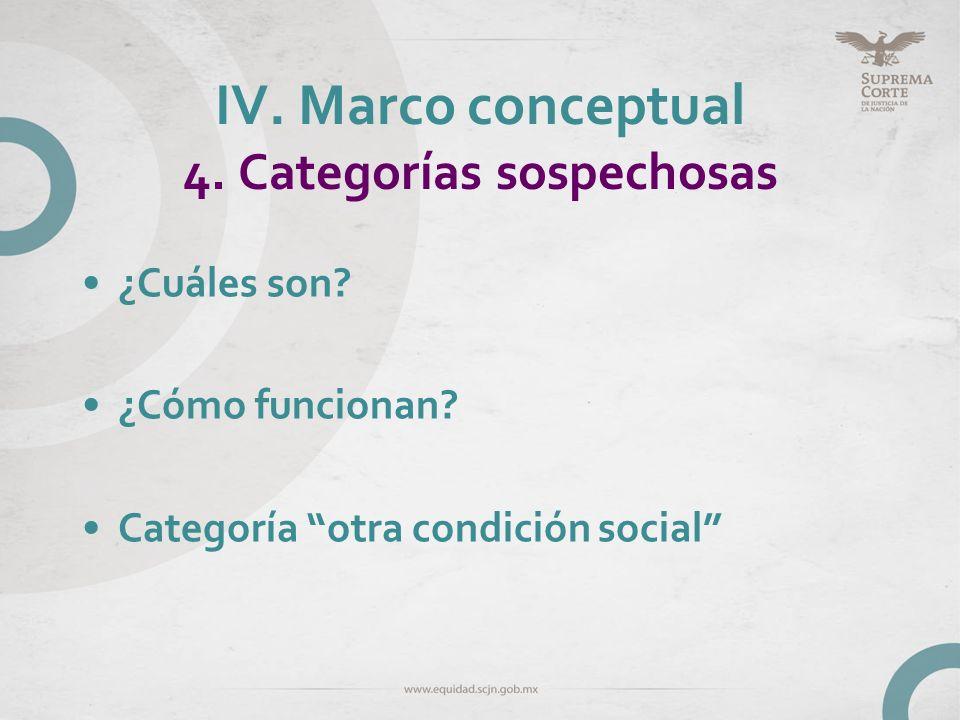 IV. Marco conceptual 4. Categorías sospechosas ¿Cuáles son? ¿Cómo funcionan? Categoría otra condición social