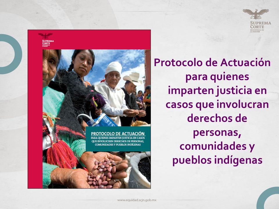 DISCRIMINACIÓN MÚLTIPLE INÉS FERNANDEZ ORTEGA MARÍA DE LOURDES DA SILVA PIMENTEL Mujer indígena, del pueblo Mepha a, que fue amenazada, golpeada y violada por tres elemento del Ejército Mexicano, dentro de su casa, en el estado de Guerrero.