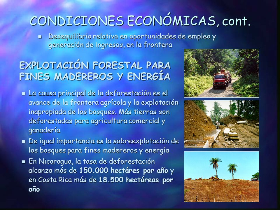 CONDICIONES ECONÓMICAS n Presión creciente sobre los eco- sistemas naturales debido a la expansión de la frontera agrícola consolidada en Costa Rica y a un fuerte avance en Nicaragua, especialmente, en las Cuencas de los ríos Indio y Maíz AGRICULTURA y GANADERÍA n En ambos países el desarrollo económico se basa principalmente en el sector primario, a expensas de la cobertura vegetal n Bajos ingresos y economías de subsistencia en las áreas rurales, en Nicaragua n Expansión de la agricultura comercial en Costa Rica