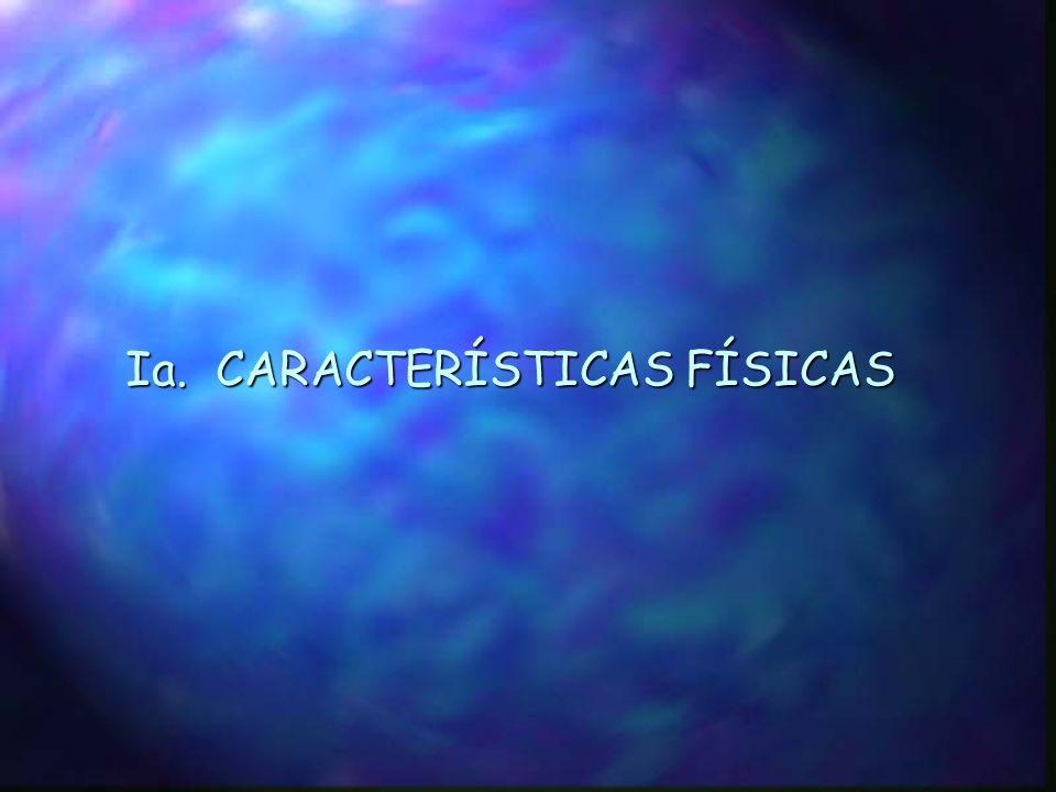 Ministerio del Ambiente y Energía (MINAE) Gobierno de Costa Rica Ministerio del Ambiente y los Recursos Naturales (MARENA) Gobierno de Nicaragua GESTION INTEGRADA DE LOS RECURSOS HÍDRICOS Y DESARROLLO SOSTENIBLE DE LA CUENCA DEL RÍO SAN JUAN Y SU ZONA COSTERA (CRSJ) Secretaría General de la Organización de los Estados Americanos (SG/OEA) Programa de las Naciones Unidas para el Medio Ambiente (PNUMA) Fondo para el Medio Ambiente Mundial (FMAM)