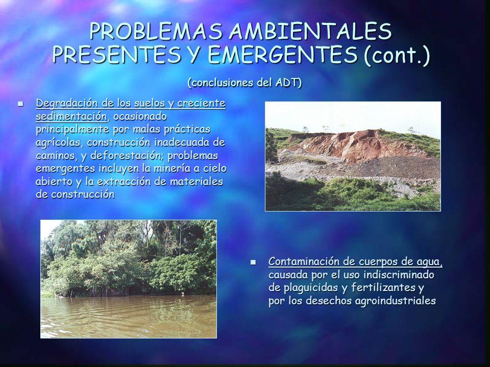 PROBLEMAS AMBIENTALES PRESENTES Y EMERGENTES (conclusiones del ADT) n Acelerada degradación de los ecosistemas transfronterizos, se deriva del tratami