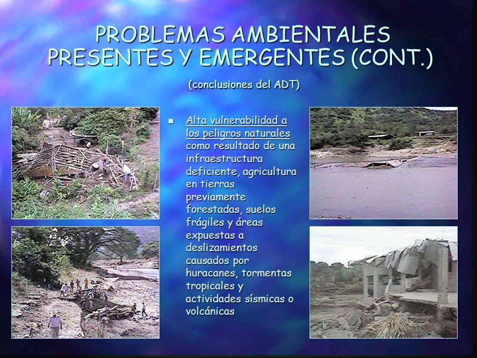 PROBLEMAS AMBIENTALES PRESENTES Y EMERGENTES (cont.) (conclusiones del ADT) n Contaminación de cuerpos de agua, causada por el uso indiscriminado de p