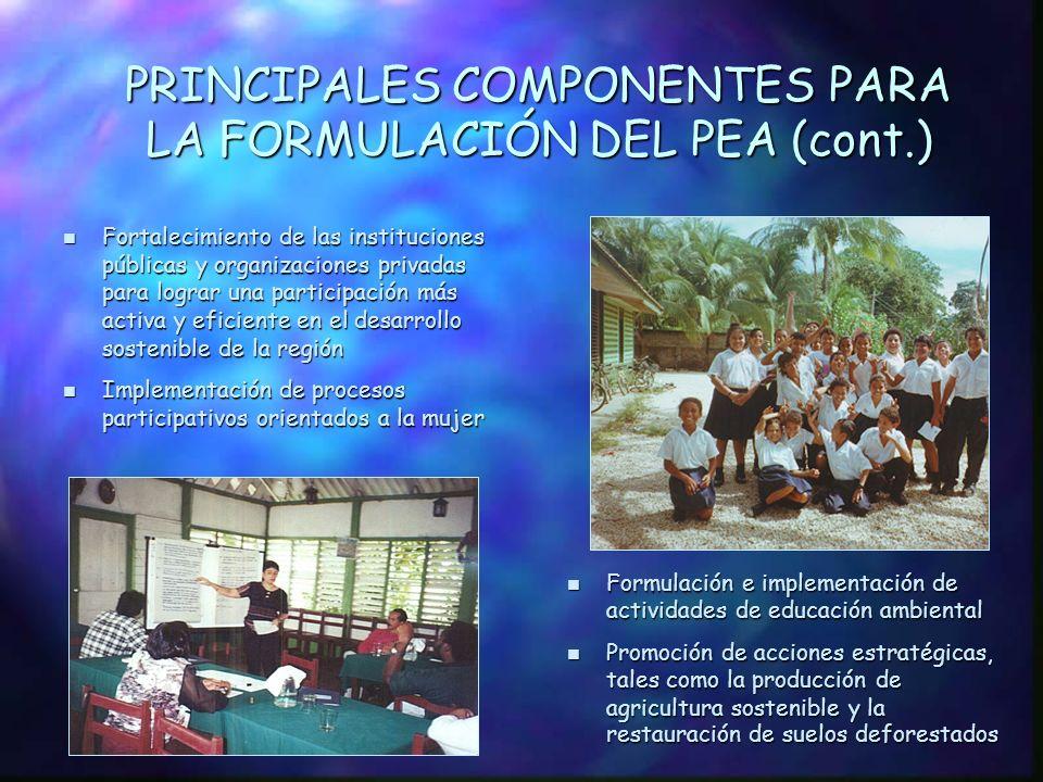 PRINCIPALES COMPONENTES PARA LA FORMULACIÓN DEL PEA n Fortalecimiento de los sistemas de información que proporcionen los mecanismos para la recopilación y diseminación adecuada de información para la toma de decisiones sobre el manejo integrado de las cuencas n Creación de un proceso de planificación bilateral coordinado para la CRSJ n Construcción de capacidad de planificación y manejo para el desarrollo sostenible, mejoramiento de la infraestructura, equipamiento institucional y diseño de mecanismos para aumentar los ingresos de las instituciones locales y regionales