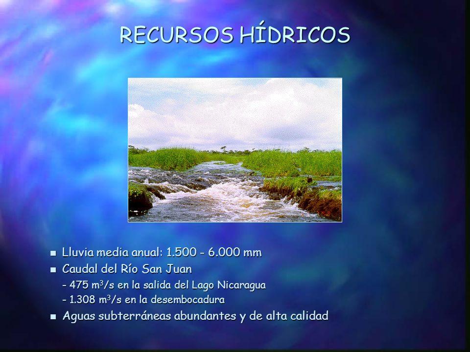 SISTEMA HIDROGRÁFICO n Lago Nicaragua, con una capacidad de 104.109 hm 3 y un área de 8.000 km 2 n Cuenca del Río San Juan n Cuencas de los Ríos Indio y Maíz (Nicaragua) n Cuencas de los Ríos Colorado y Tortuguero (Costa Rica) Lago Managua Lago Managua - Aunque el lago no está comprendido dentro del área del proyecto, se estima que sus descargas en la Cuenca del Río San Juan tienen impactos ambientales negativos.