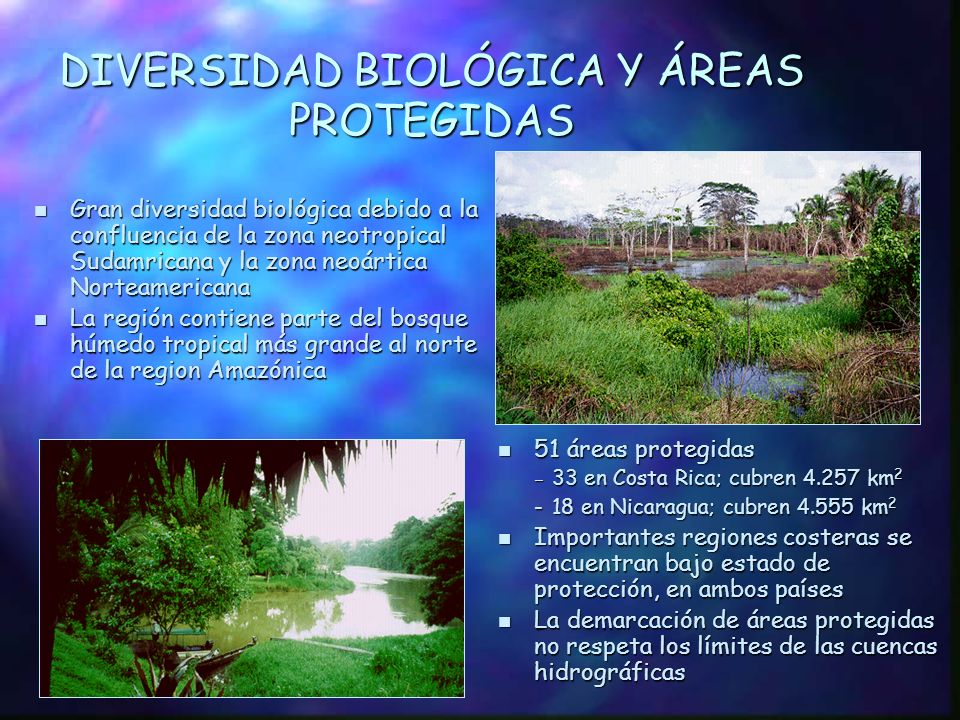 ELEVACIÓN Y ECOSISTEMAS TERRESTRES ELEVACIÓN Y ECOSISTEMAS TERRESTRES 1.Bosque tropical seco al este, norte y oeste del Lago Nicaragua 2.Bosque nuboso