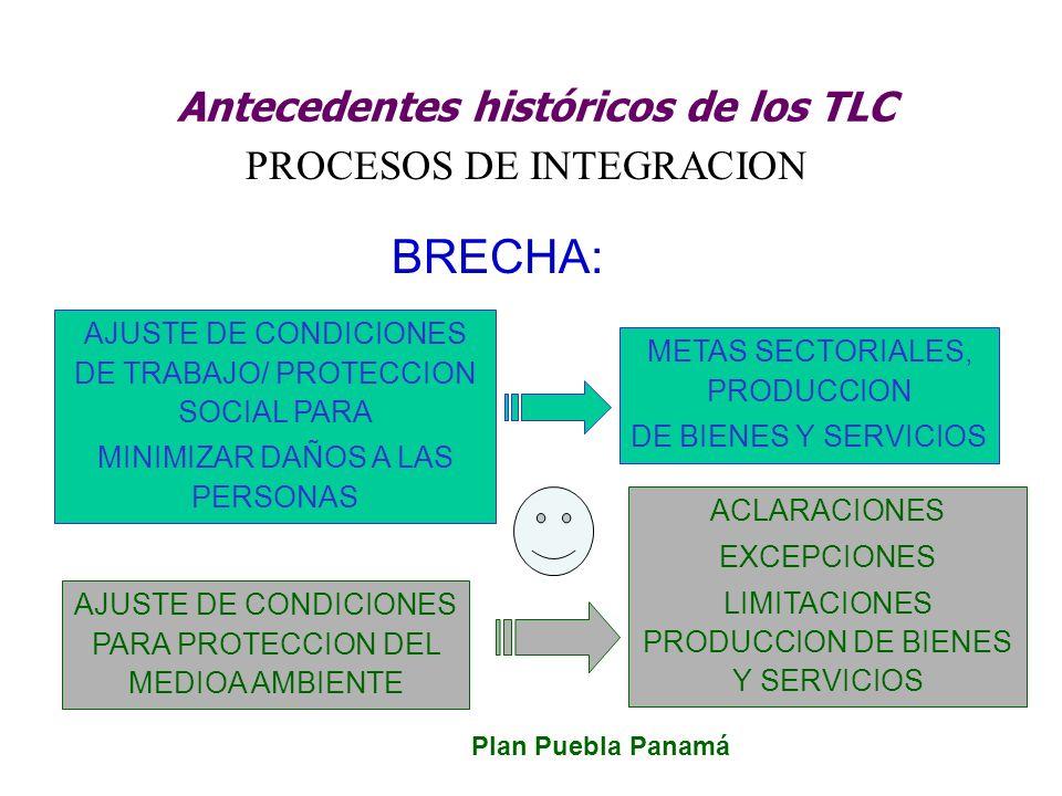 Antecedentes históricos de los TLC PROCESOS DE INTEGRACION BRECHA: AJUSTE DE CONDICIONES DE TRABAJO/ PROTECCION SOCIAL PARA MINIMIZAR DAÑOS A LAS PERS