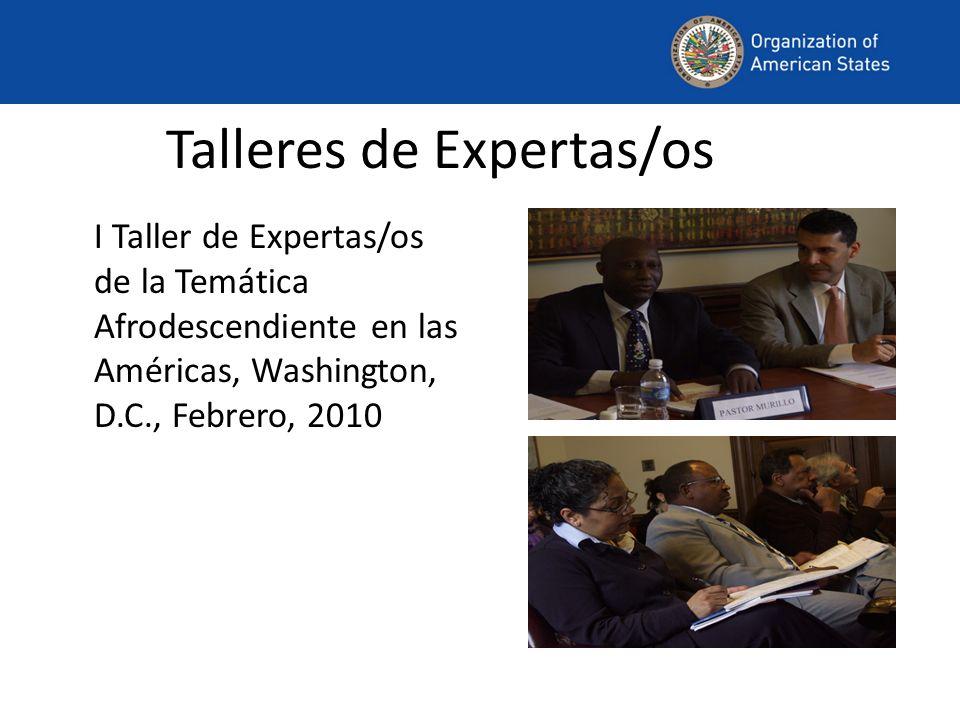 Talleres de Expertas/os I Taller de Expertas/os de la Temática Afrodescendiente en las Américas, Washington, D.C., Febrero, 2010