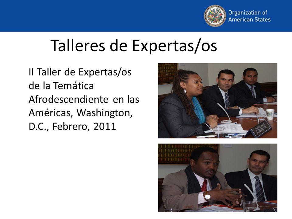 Talleres de Expertas/os II Taller de Expertas/os de la Temática Afrodescendiente en las Américas, Washington, D.C., Febrero, 2011
