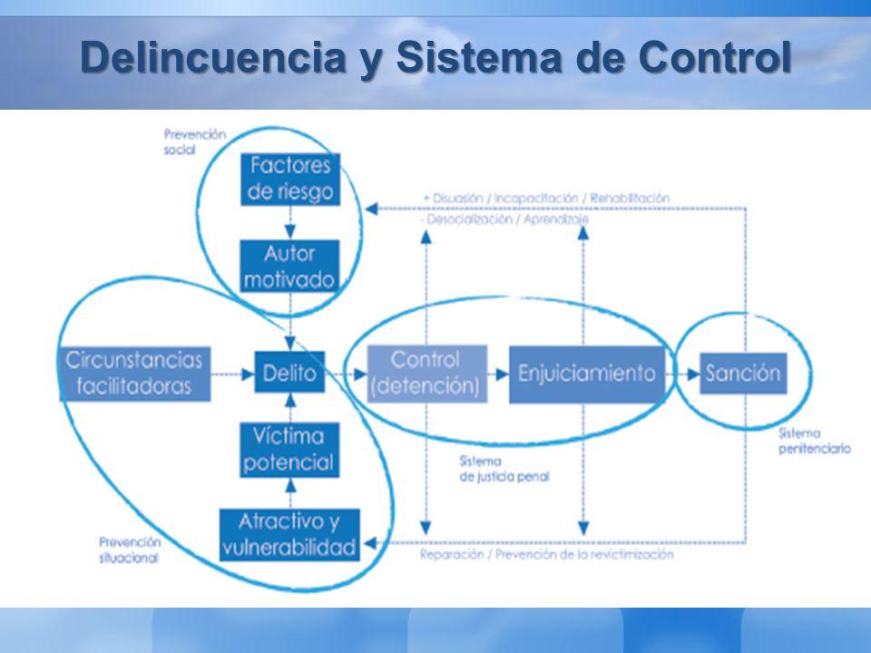 Delincuencia y Sistema de Control