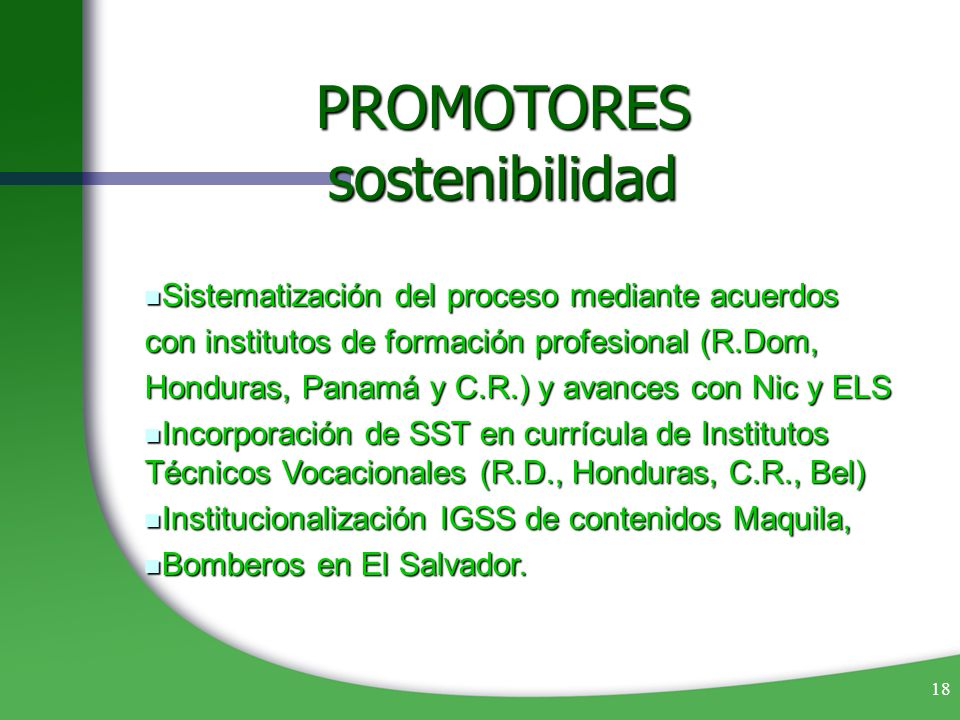 18 Sistematización del proceso mediante acuerdos Sistematización del proceso mediante acuerdos con institutos de formación profesional (R.Dom, Hondura