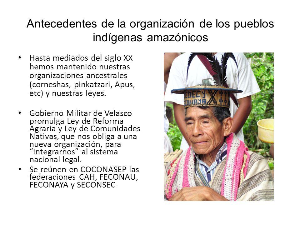 Antecedentes de la organización de los pueblos indígenas amazónicos En 1985, AIDESEP es el nuevo nombre de COCONASEP, al que se comienzan a afiliar otras organizaciones y a organizar allí donde no habían organizaciones.