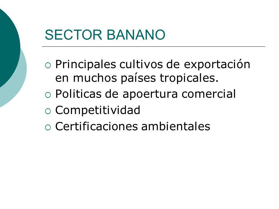 SECTOR BANANO Principales cultivos de exportación en muchos países tropicales. Politicas de apoertura comercial Competitividad Certificaciones ambient