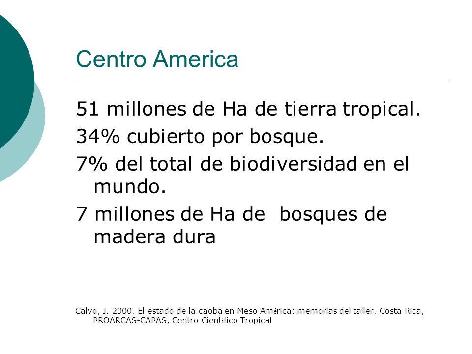 Centro America 51 millones de Ha de tierra tropical. 34% cubierto por bosque. 7% del total de biodiversidad en el mundo. 7 millones de Ha de bosques d