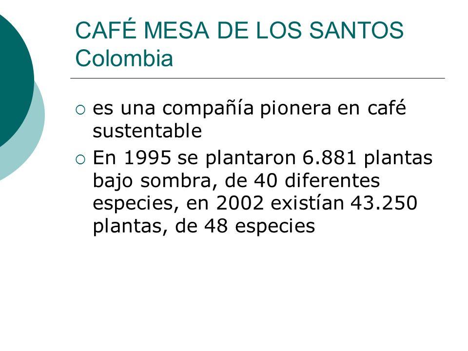 CAFÉ MESA DE LOS SANTOS Colombia es una compañía pionera en café sustentable En 1995 se plantaron 6.881 plantas bajo sombra, de 40 diferentes especies