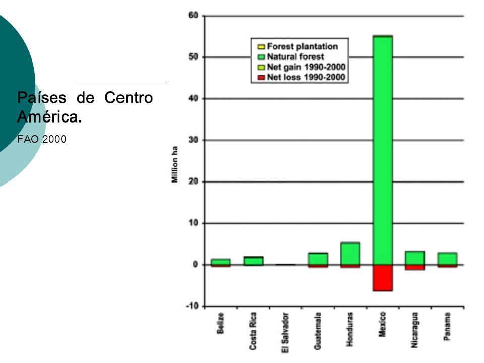 Países de Centro América. FAO 2000