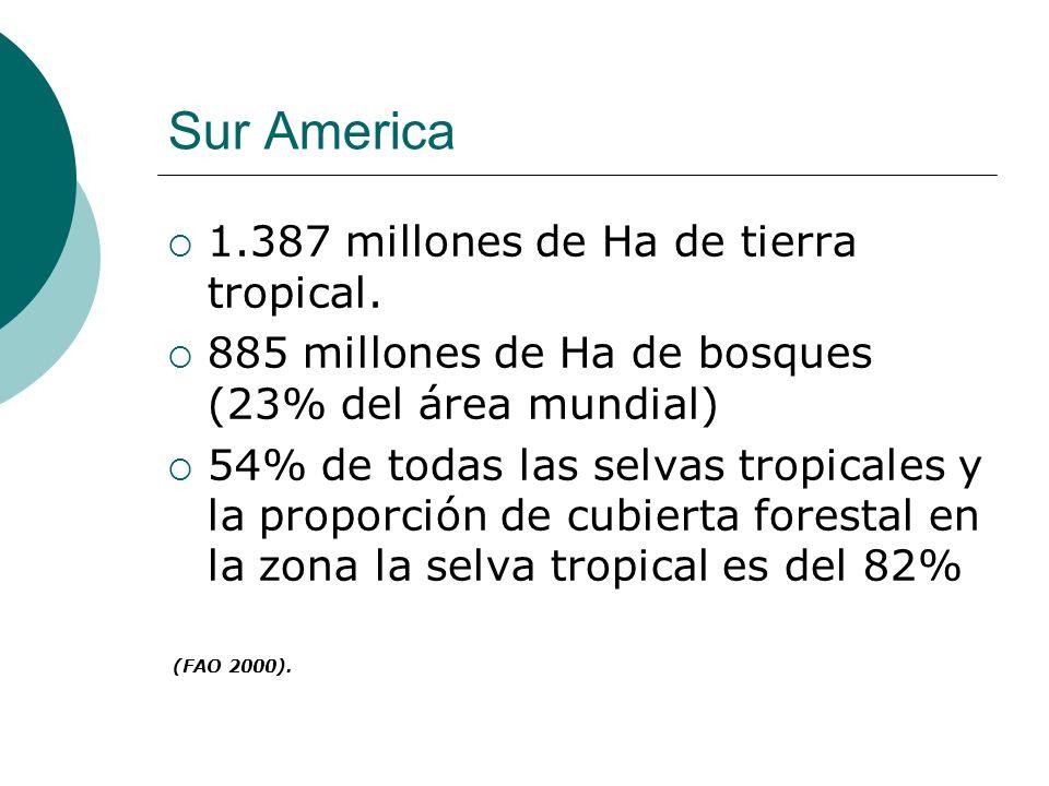 Sur America 1.387 millones de Ha de tierra tropical. 885 millones de Ha de bosques (23% del área mundial) 54% de todas las selvas tropicales y la prop