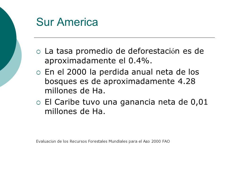 La tasa promedio de deforestaci ó n es de aproximadamente el 0.4%. En el 2000 la perdida anual neta de los bosques es de aproximadamente 4.28 millones
