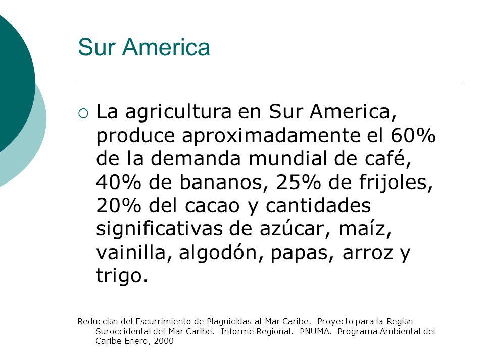 La agricultura en Sur America, produce aproximadamente el 60% de la demanda mundial de café, 40% de bananos, 25% de frijoles, 20% del cacao y cantidad