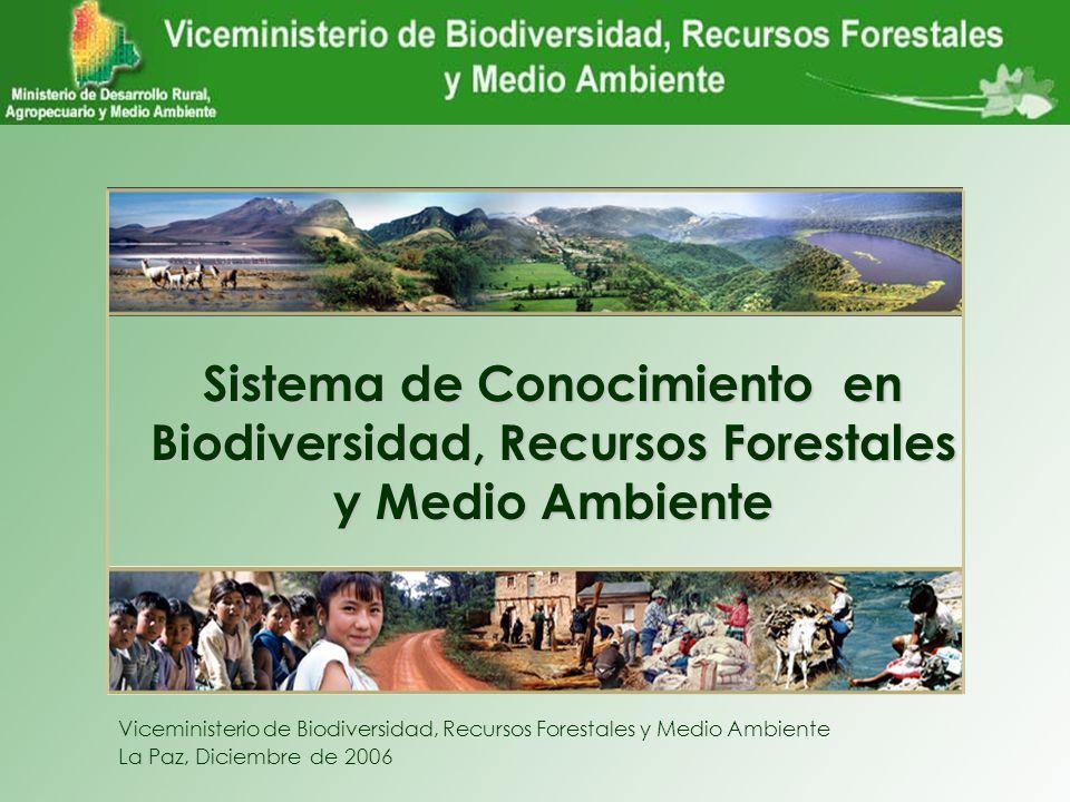 VBIOREFORMA Sistema de Conocimiento en Biodiversidad, Recursos Forestales y Medio Ambiente Viceministerio de Biodiversidad, Recursos Forestales y Medi