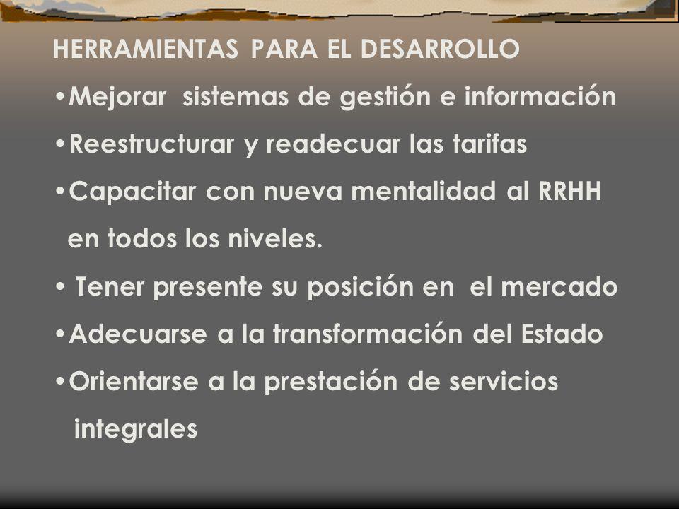 HERRAMIENTAS PARA EL DESARROLLO Mejorar sistemas de gestión e información Reestructurar y readecuar las tarifas Capacitar con nueva mentalidad al RRHH