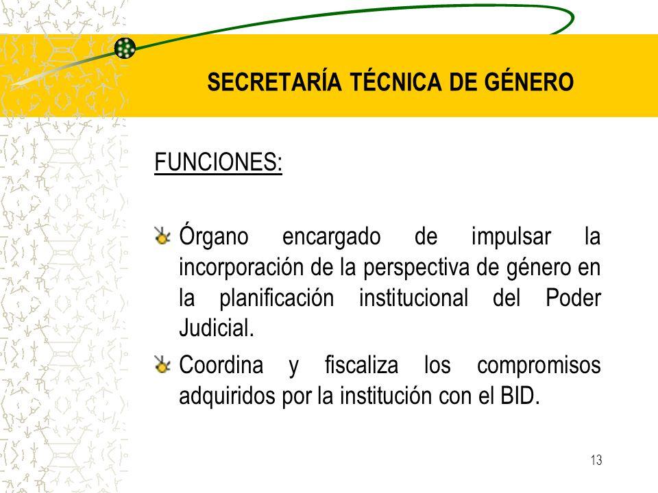 13 SECRETARÍA TÉCNICA DE GÉNERO FUNCIONES: Órgano encargado de impulsar la incorporación de la perspectiva de género en la planificación institucional