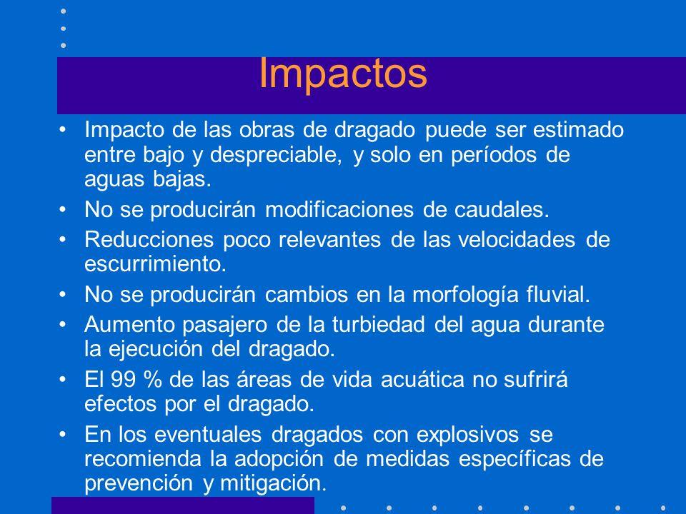 Impactos Impacto de las obras de dragado puede ser estimado entre bajo y despreciable, y solo en períodos de aguas bajas. No se producirán modificacio