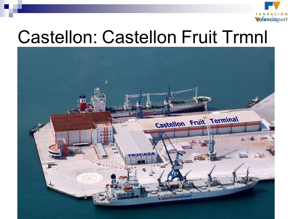 Castellon: Castellon Fruit Trmnl